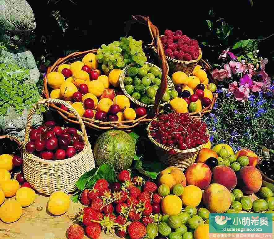 美容食品集锦